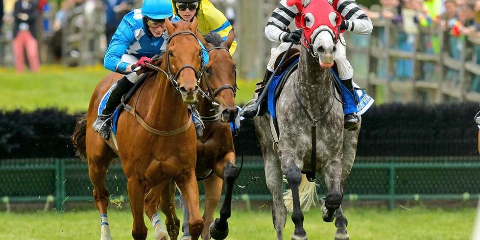 Radnor Hunt Races