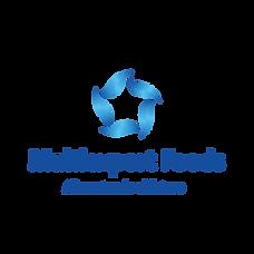 Logo MEF_degr_solo_vert_ESPAÑOL-01.png