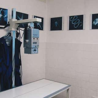 Vybavení Veterinární Kliniky Panda