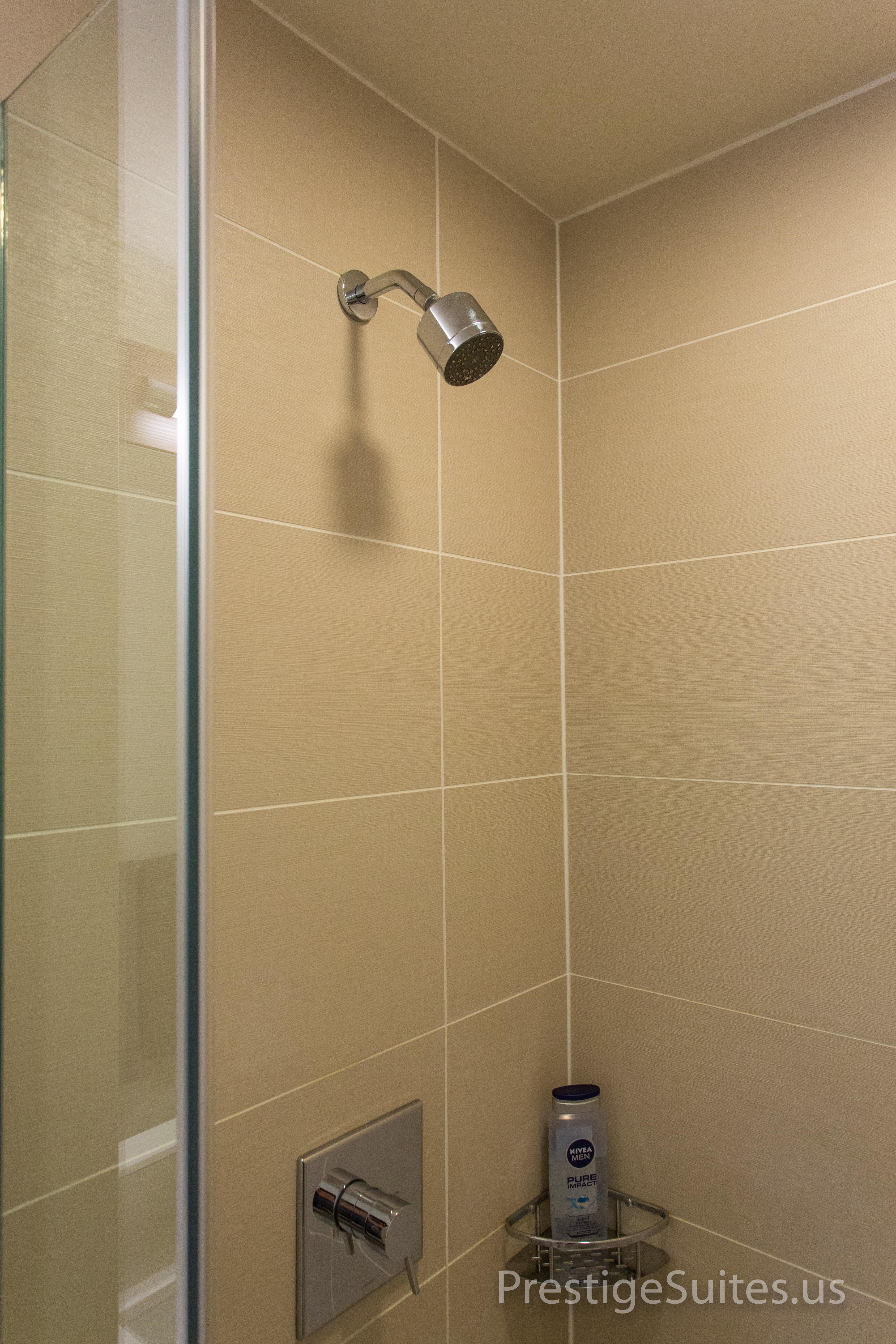 Prestige Suites 111 W Wacker 3904_019