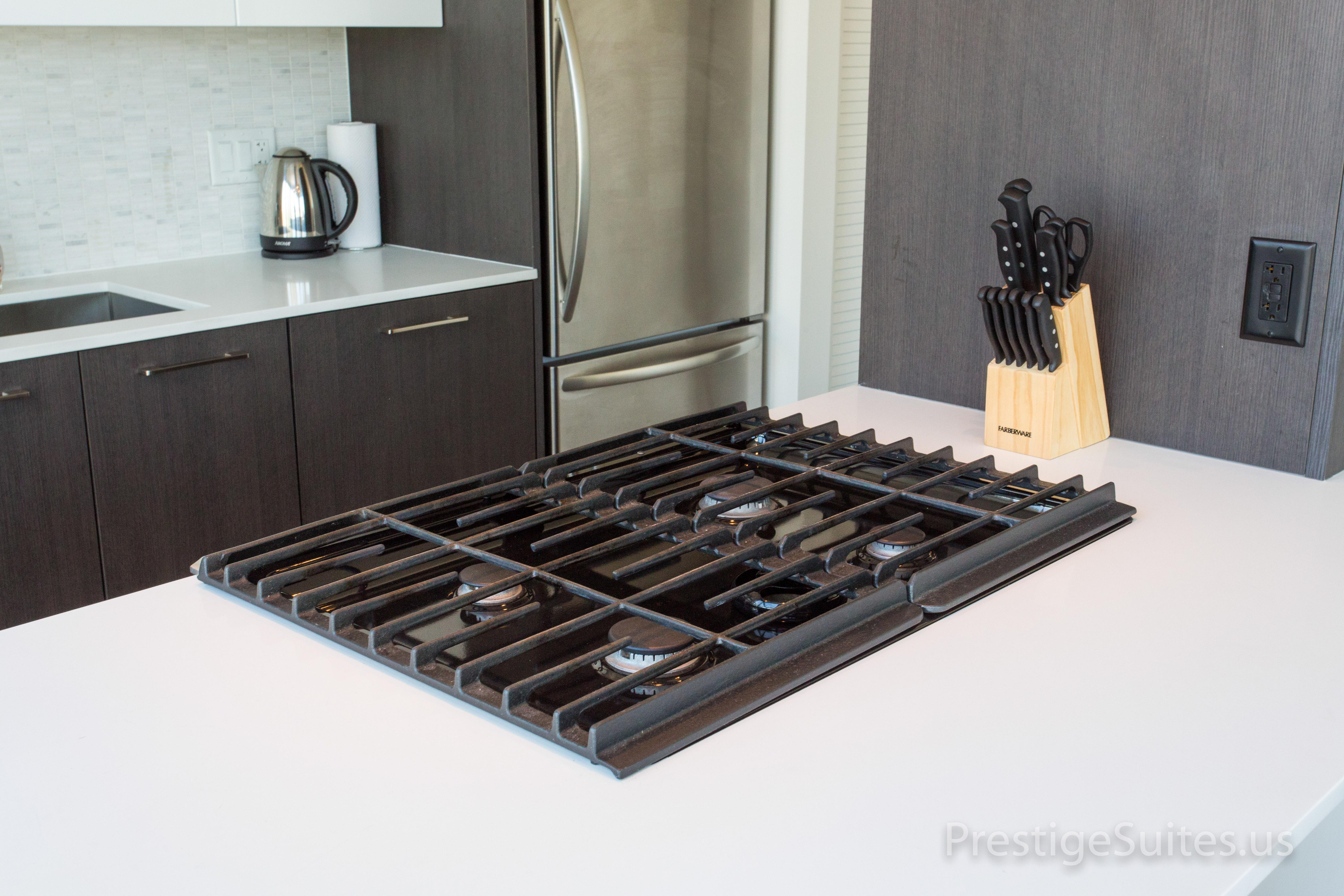 Prestige Suites 111 W Wacker 3904_012
