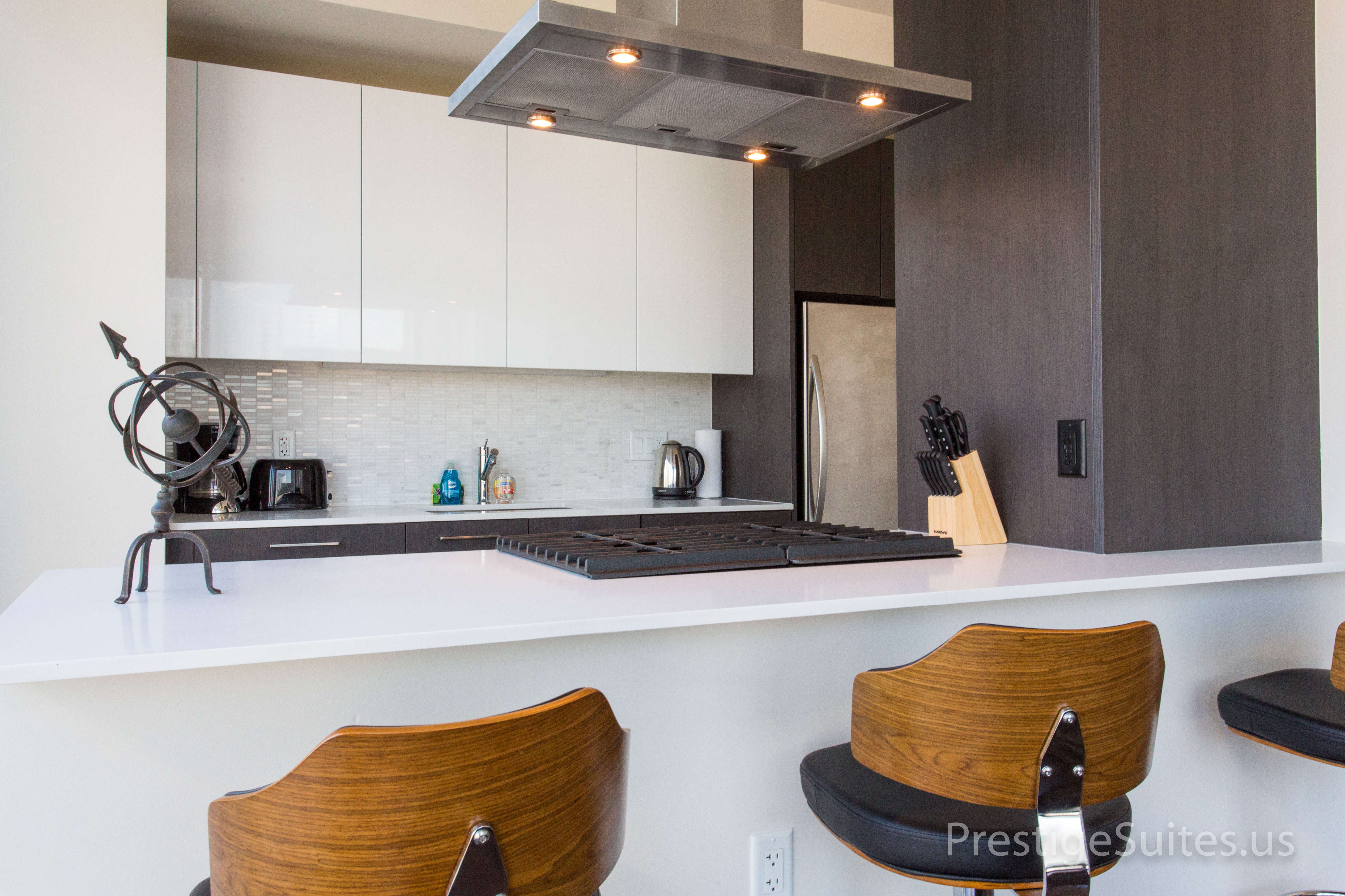 Prestige Suites 111 W Wacker 3904_011