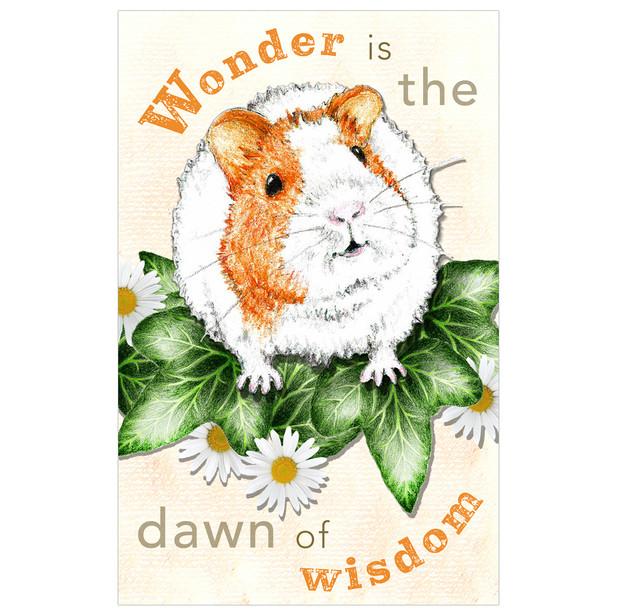 'Wonder is the Dawn of Wisdom' Postcard