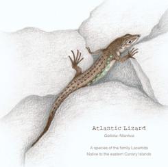Atlantic Lizard