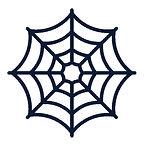 spinnenenetz.JPG