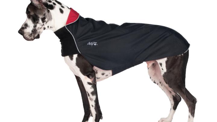 Chilly Dogs - Harbour Slicker, Noir