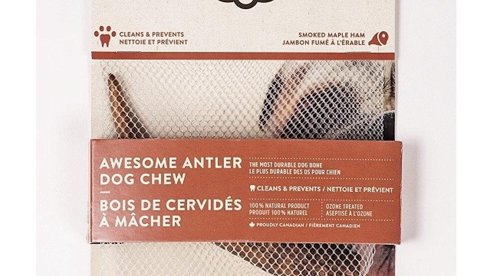 Dentler - Bois de cervidé, entier, jambon érable (XL)