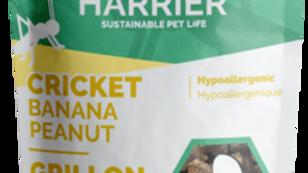 Wilder Harrier - Grillons/Banane/Arachide