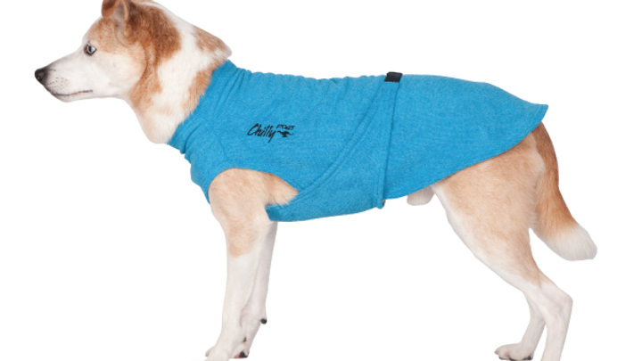 Chilly Dogs - Soaker Robe, Turquoise