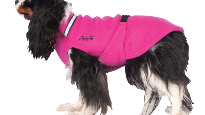 Chilly Dogs - Chilly Sweater, Framboise, Gr:32