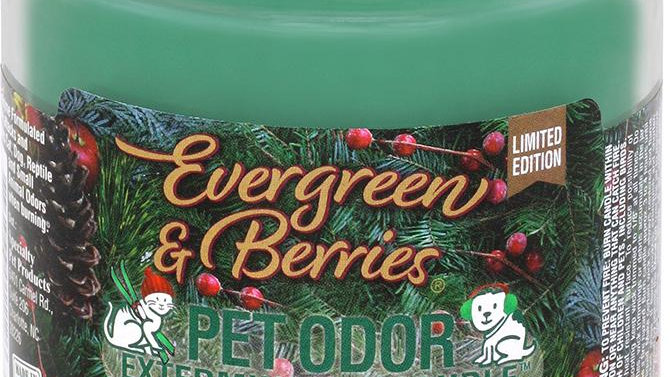 Holly Molly - Evergreen & Berries