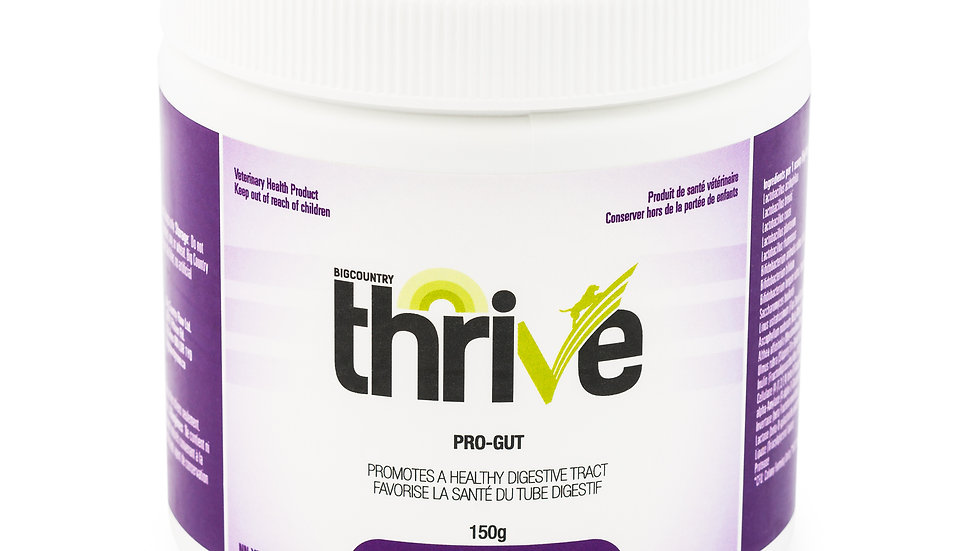 BCR - Thrive, ProGut, 150g