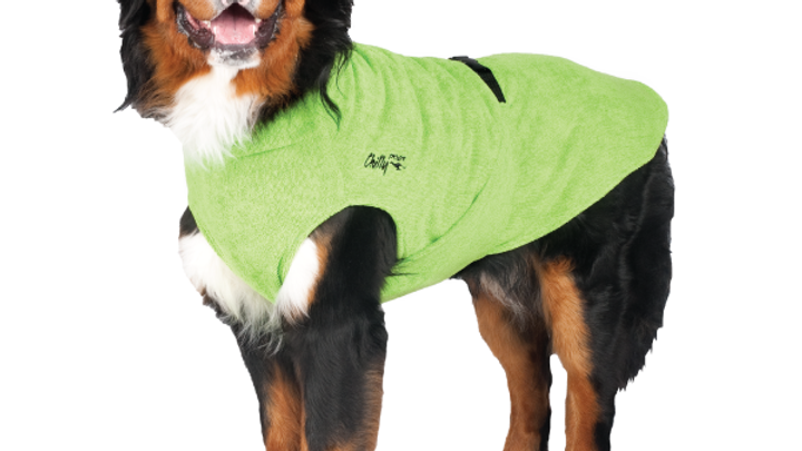 Chilly Dogs - Soaker robe, Lime