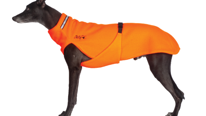 Chilly Dogs - Chilly Sweater, Orange fluo