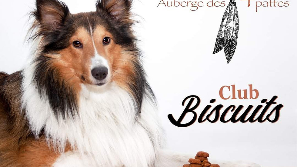 Club Biscuit - 1 mois