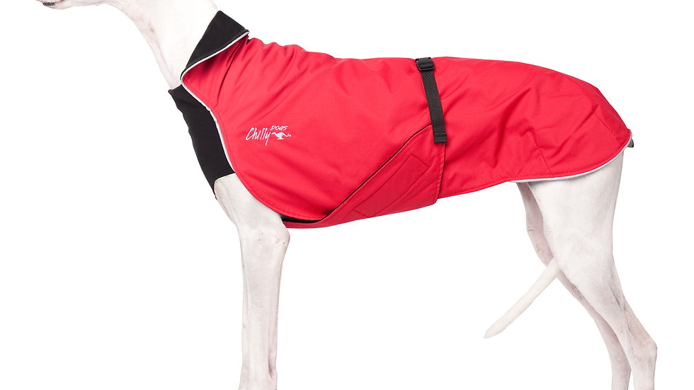Chilly Dogs - Alpine Blazer, Noir/Rouge
