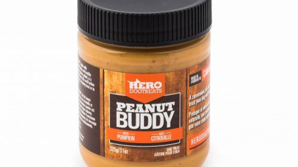 Hero - Peanut Buddy Citrouille
