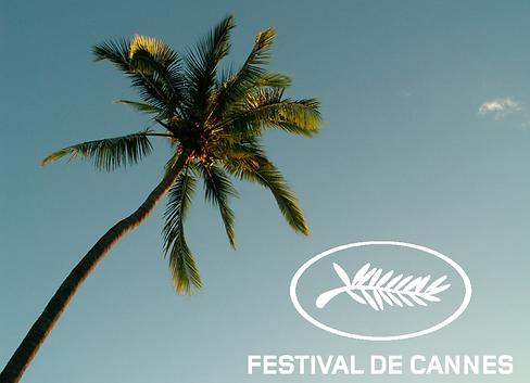 festival de cannes.png