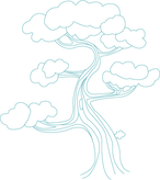 Esboço da árvore