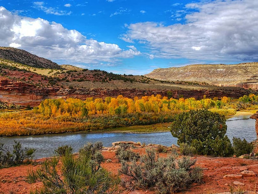 Fall in Love with Grand Junction, Colorado