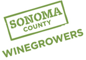 Sonoma County Vineyards Officially 99% Certified Sustainable