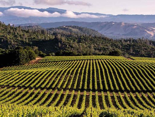 Pride Journey Explore: California Wine Country