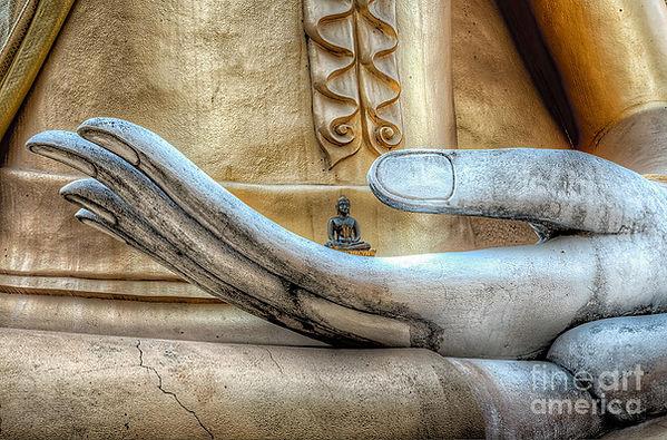 buddhas-hand.jpg