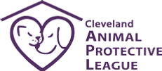 Clevelad Animal Protective League | Pet Foster Care Cleveland OH