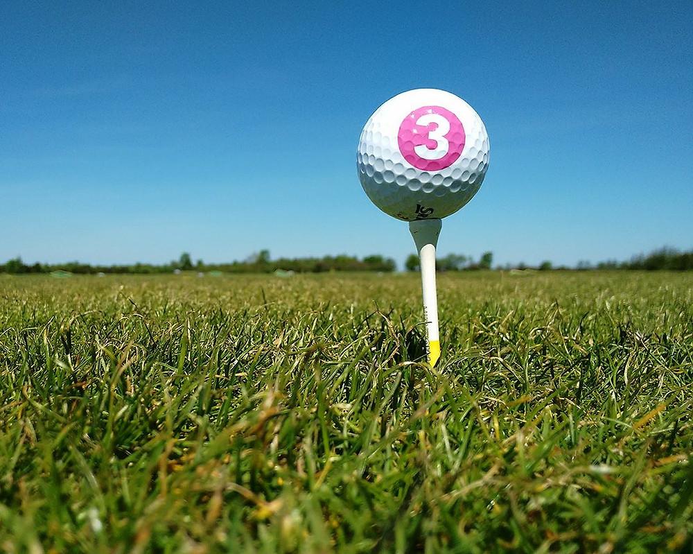 TV3 Golfivõistlus Jõelähtmel