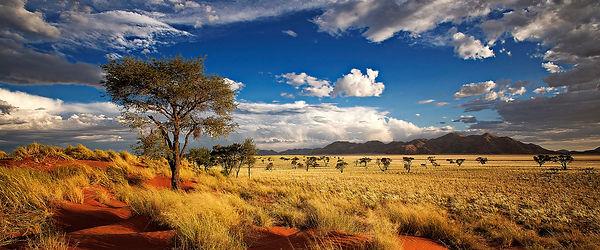 ER_Namibia_1440x600.jpg