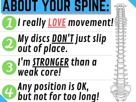 Quelques infos à savoir à propos de notre dos