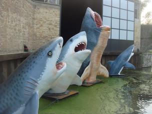 Antepavilion 2020 Sharks