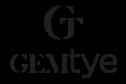 GemTye, Brand Repair Inc, best marketing in Denver