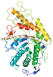 Fig_3_Cocrystal_Structure_composite_PNG-