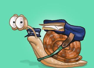 Snail Mail Stinks
