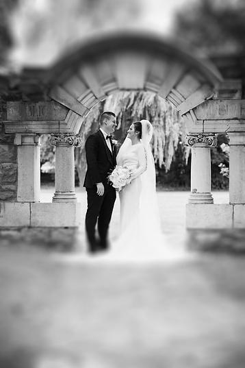 wedding blur.101.png