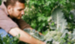 gardening in a mole-free setting