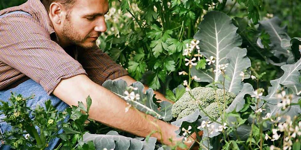 Planning Your Vegetable Garden