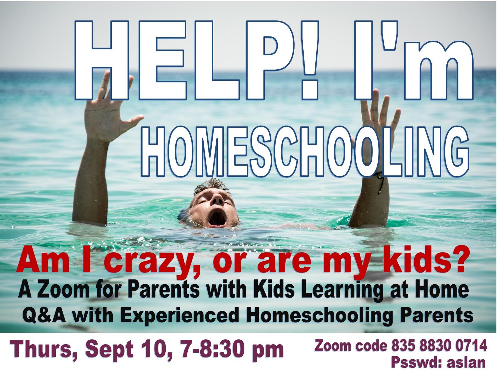 Homeschooling Zoom