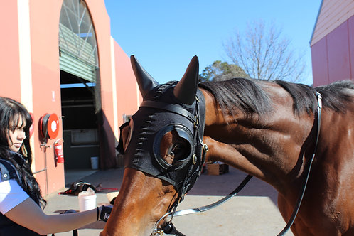 Blinkers With Earmuffs