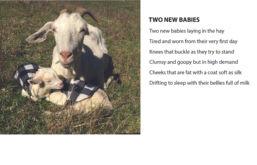 GOETRY 2 NEW BABIES.jpg