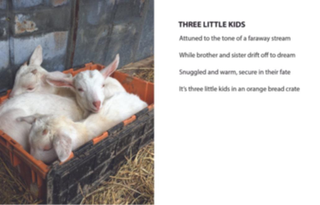 GOETRY THREE LITTLE KIDS.jpg