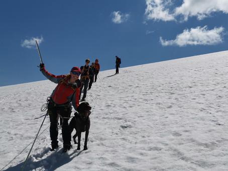 Sagi og Mjølkedalspiggen