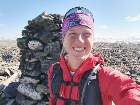 Hestdalshøgdi (2091 moh) - topp nr. 300!