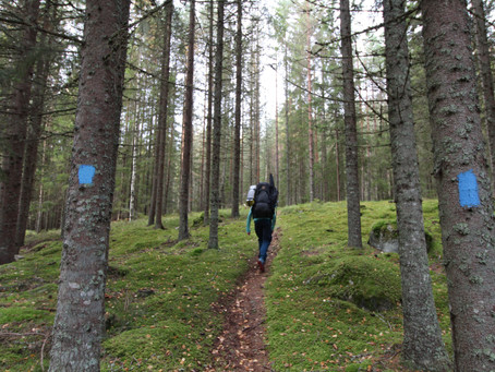 Finnskogrunden - inn i de dype skoger