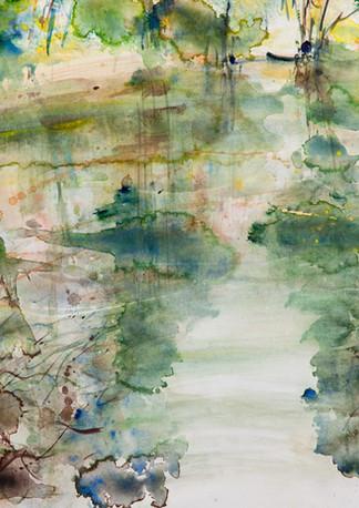 Reflets verts