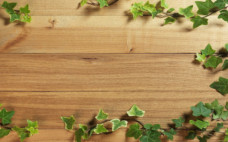 plant-wood-background-6603-6743-hd-wallp
