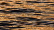 Lake Surface at Dusk