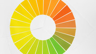 The Yellow Colour Circle