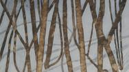 shona_sladyk_winter-treesjpg